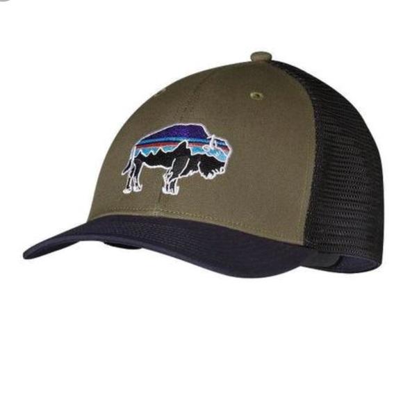 Patagonia Fitz Roy Bison SnapBack Hat Green Black.  M 5b7994131e2d2d66ca121cdf 87d519698083